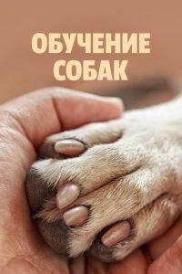 Canine Intervention: Season 1