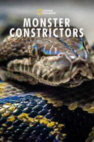 Monster Constrictors