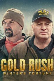 Gold Rush: Winter's Fortune