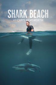 Shark Beach With Chris Helmsworth