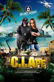 CI Ape